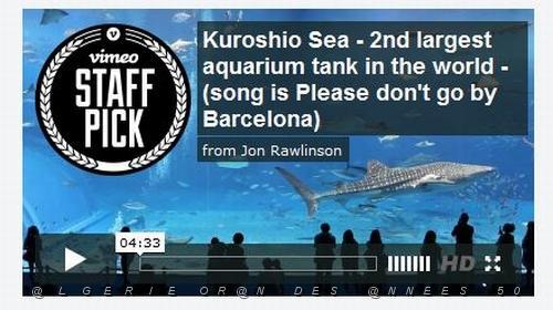 ORAN DES ANNEES 50 /B VIDEOS PREFEREES/197Kuroshio Sea ...